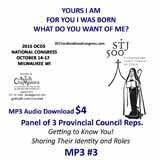 2015 OCDS MIL MP3 Audio Talk 03